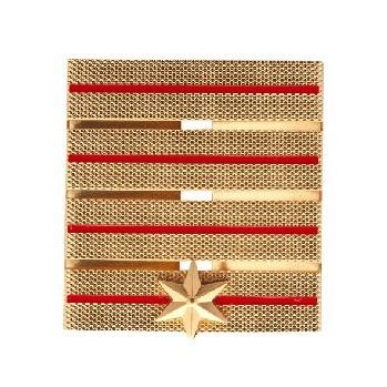 Brandweer Adjunct Hoofdcommandeur