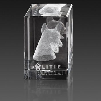 Pressepapier kristal met 3D lasergravering